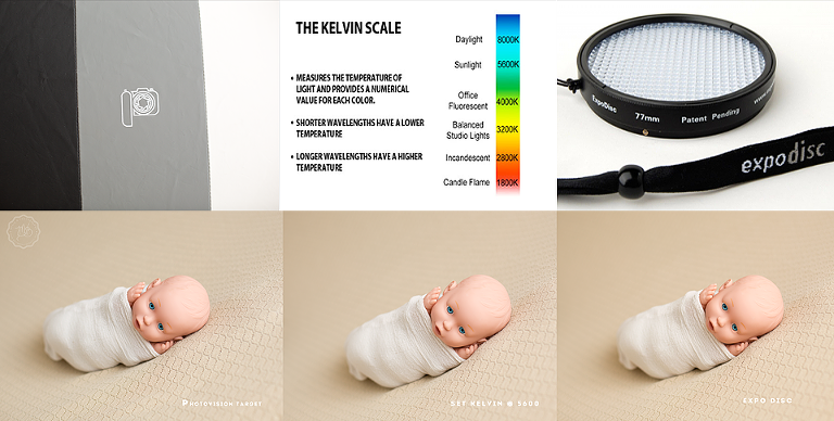 White balance with malia b photography arizona newborn photographer