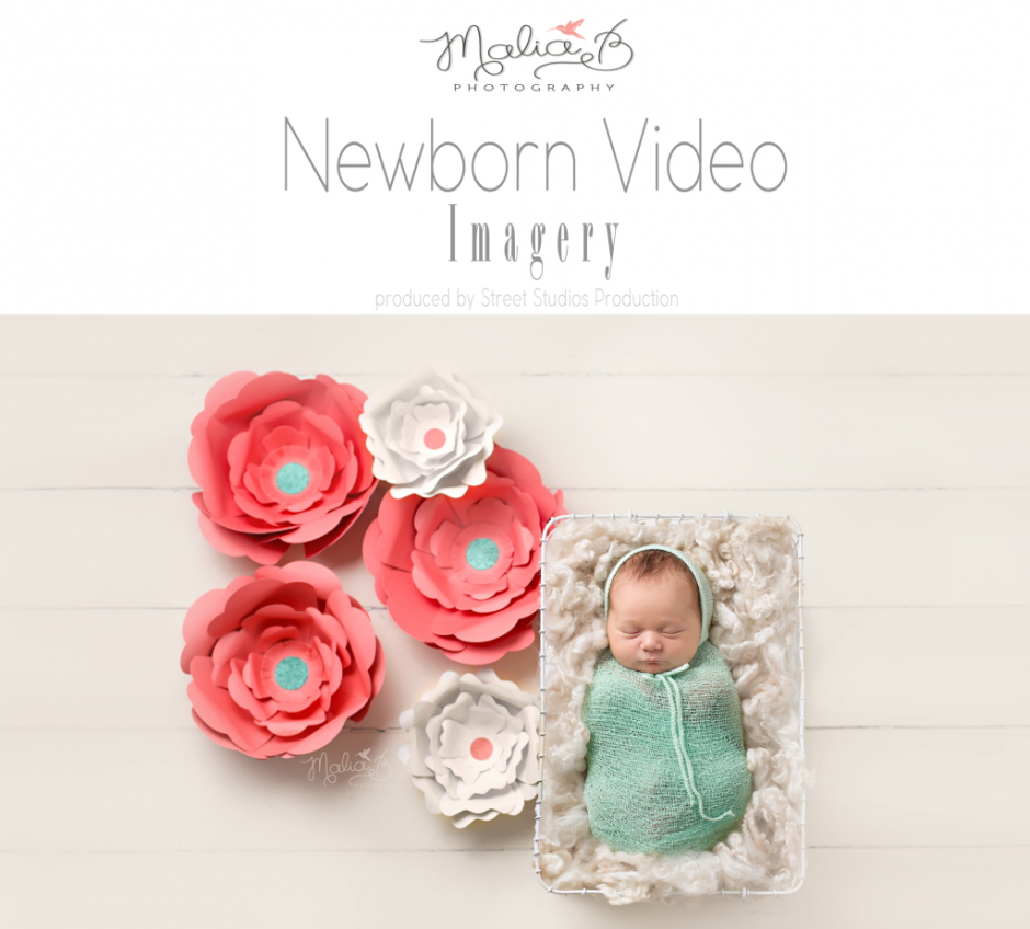 Newborn Videos Phoenix Baby Photographer Malia B PHotography